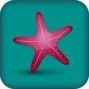 Icon for Starfish Reality