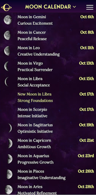 AstroMatrix Birth Chart Synastry Horoscopes screenshot 2