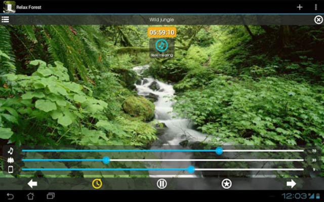 Relax Forest - Nature sounds: sleep & meditation screenshot 19