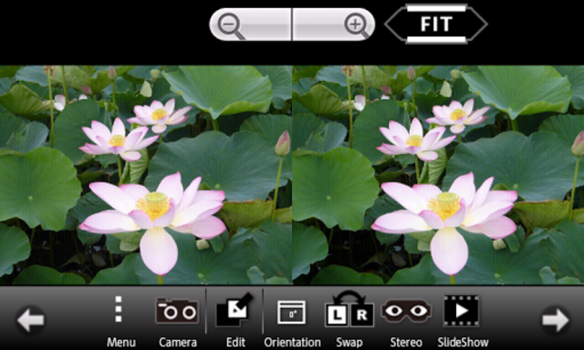 3DSteroid Pro screenshot 1