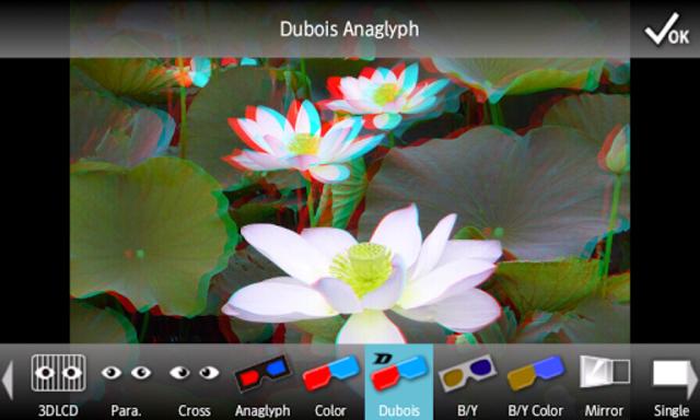 3DSteroid Pro screenshot 2