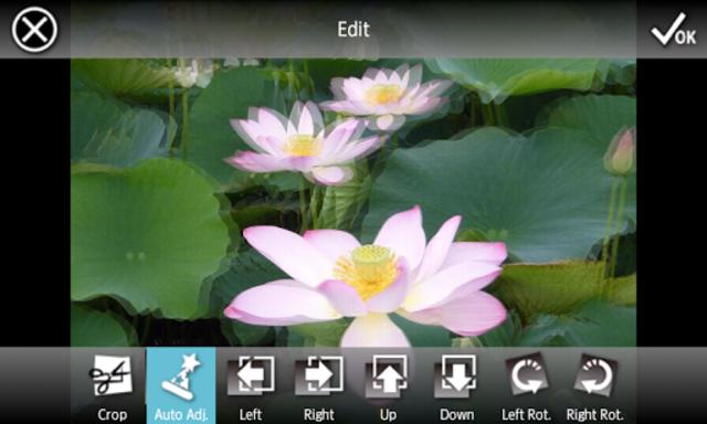 3DSteroid Pro screenshot 3