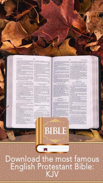 KJV Bible screenshot 27