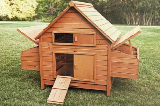 Chicken Coop screenshot 2