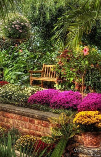 Garden Landscape Design screenshot 1