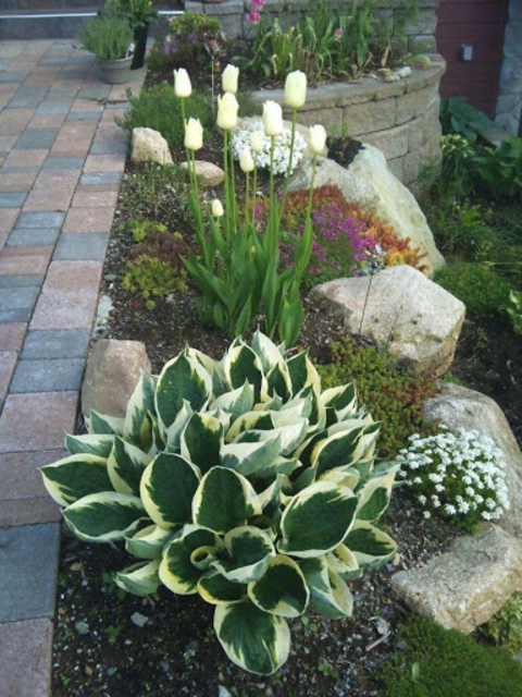 Garden Landscape Design screenshot 4