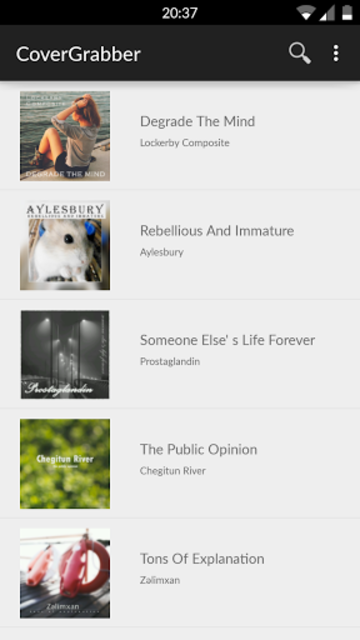 Album Art Downloader (Ad-free) screenshot 1