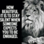 Motivational Quotes - Daily Quote & Status Message
