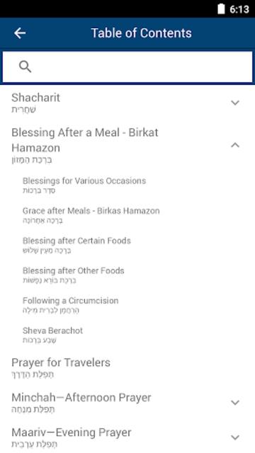 Siddur Tehillat Hashem – Linear Edition screenshot 3
