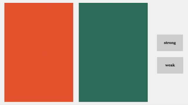 Color Flower Essence Test screenshot 5
