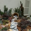 Icon for Rock Garden Ideas