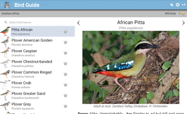 Roberts Bird Guide 2 screenshot 12