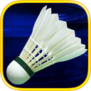3D badminton Olympic Tournament
