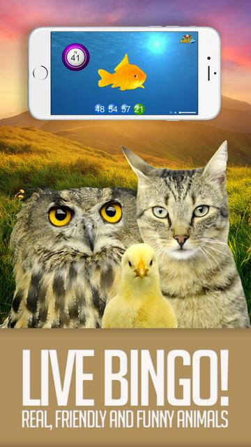 ANIMAL BINGO - Live Animal Bingo & Slots! screenshot 1