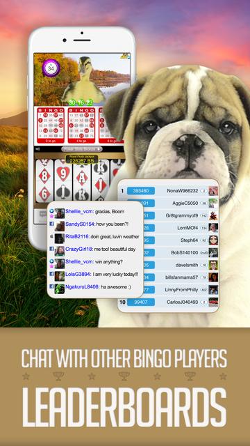 ANIMAL BINGO - Live Animal Bingo & Slots! screenshot 2
