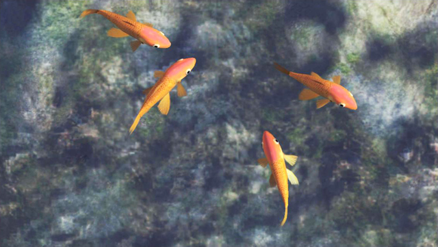 Fish Sim for Cats screenshot 1