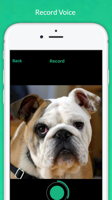 Talking Pets - Make your Cats and Dogs Speak screenshot 2