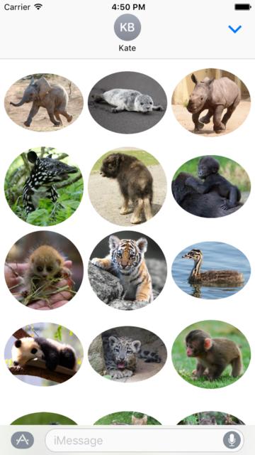 Animal Babies Stickers screenshot 1