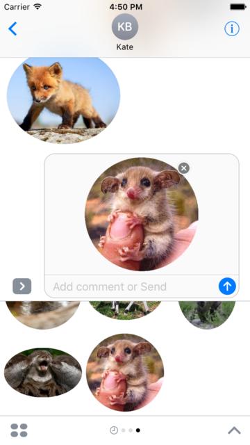 Animal Babies Stickers screenshot 2