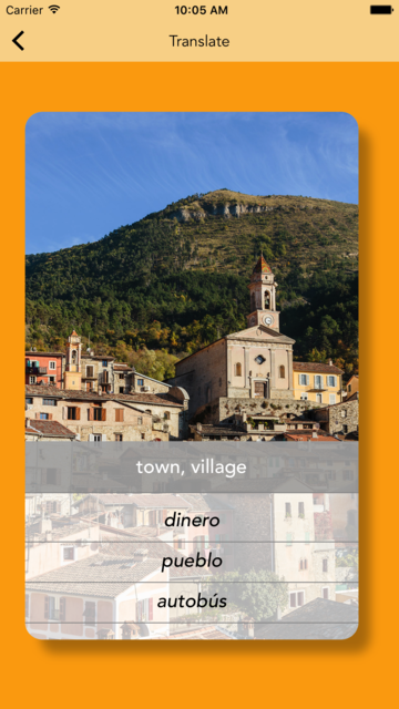 Spanish Vocabulary Flashcards Premium screenshot 5
