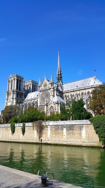 VR Notre Dame de Paris Virtual Reality 360 screenshot 2