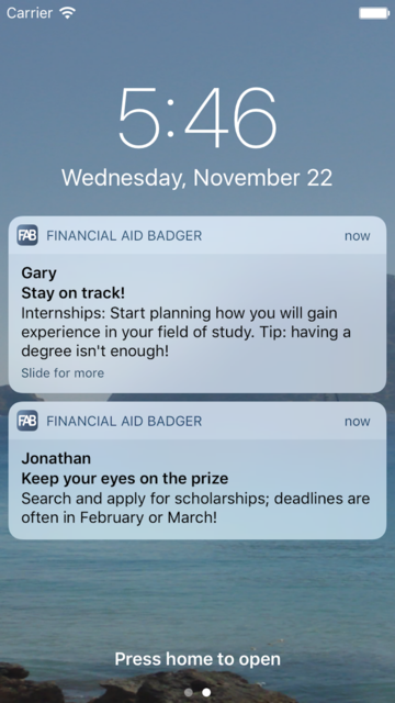 Financial Aid Badger screenshot 3