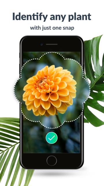 PlantFinder - Plant Identifier screenshot 1