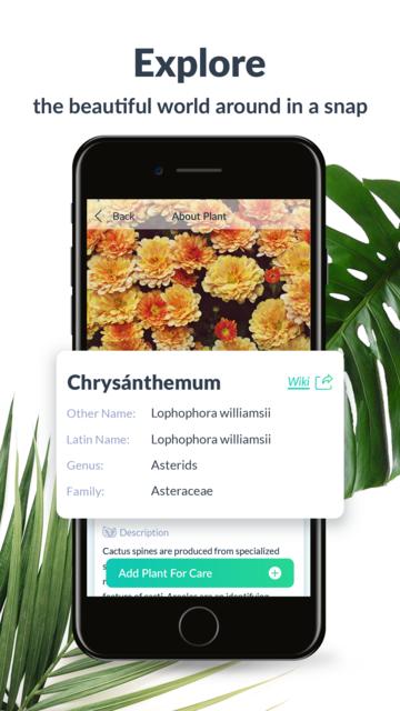 PlantFinder - Plant Identifier screenshot 3