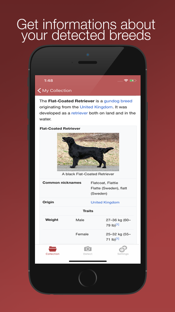 Dog Breed Scanner screenshot 5