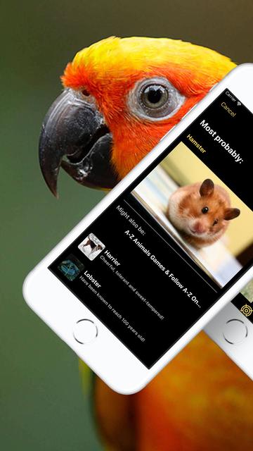 Animal Identifier screenshot 3