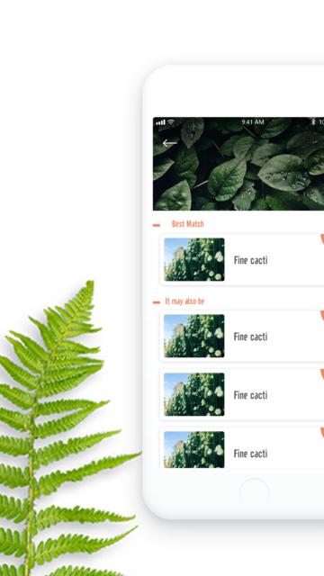 PlantDetect - Plant Identifier screenshot 3
