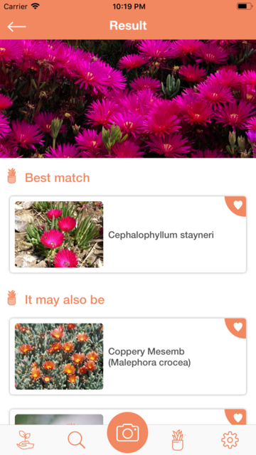 PlantDetect - Plant Identifier screenshot 6