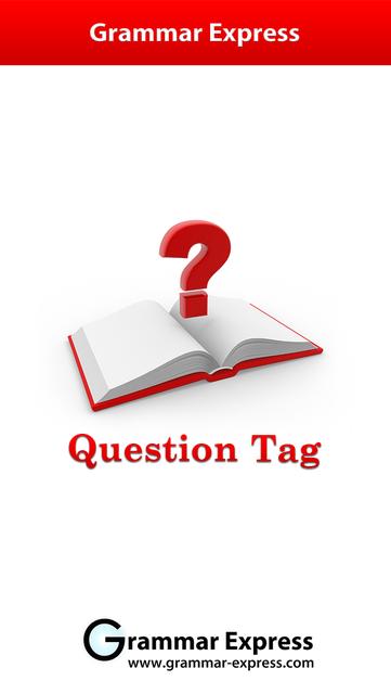 Grammar Express: Question Tag screenshot 1