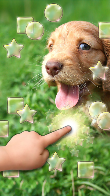 Cute Dogs Slideshow & Wallpapers (HD) screenshot 1