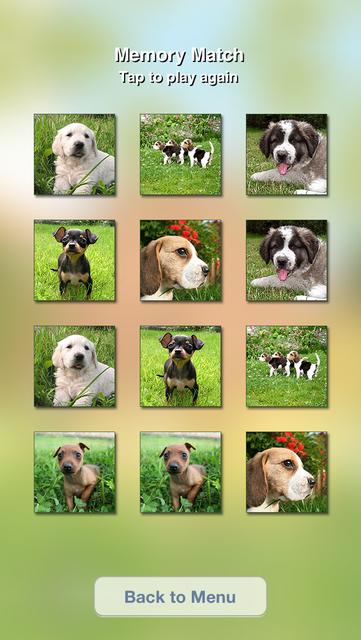 Cute Dogs Slideshow & Wallpapers (HD) screenshot 2