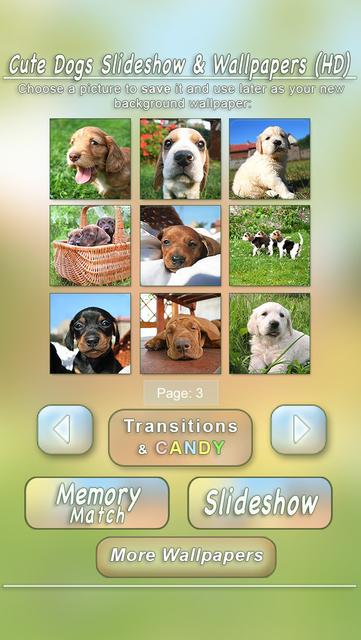Cute Dogs Slideshow & Wallpapers (HD) screenshot 5