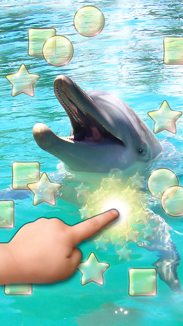 Lovely Dolphins Slideshow & Wallpapers screenshot 1
