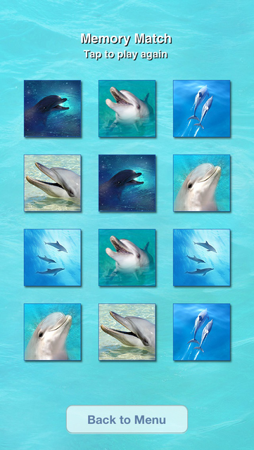 Lovely Dolphins Slideshow & Wallpapers screenshot 2