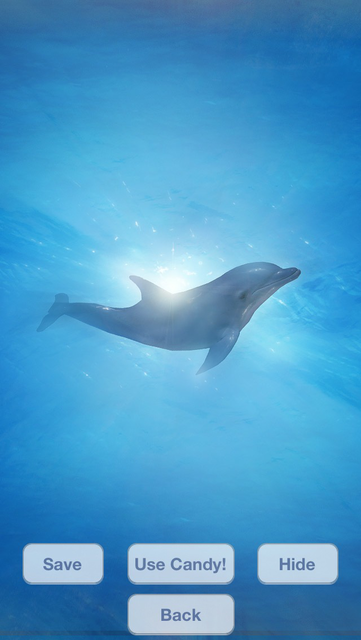 Lovely Dolphins Slideshow & Wallpapers screenshot 4