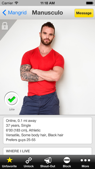 Mister gay dating site