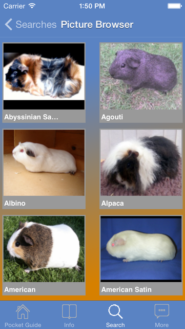 Pocket Guide Guinea Pigs screenshot 2
