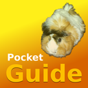 Icon for Pocket Guide Guinea Pigs