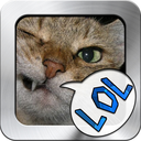 Top Rage Comic app + Similar funny pic apps portfolio - (Over 1.4M downloads)