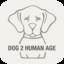 Human To Dog Age