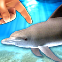 Icon for Dolphin Fingers! 3D Interactive Aquarium