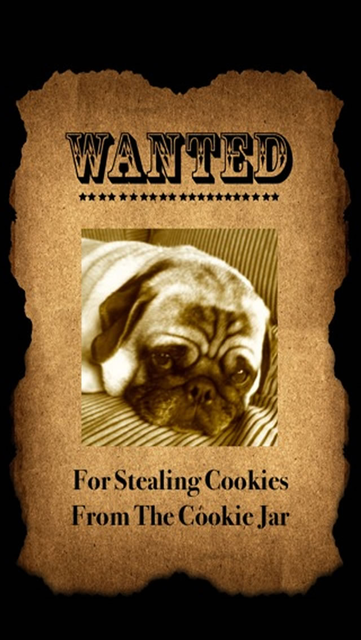 Wanted Poster Booth screenshot 1