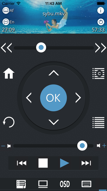 Sybu for Kodi and XBMC screenshot 6
