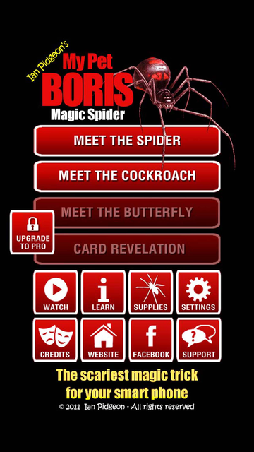 Magic Spider - My Pet Boris screenshot 31
