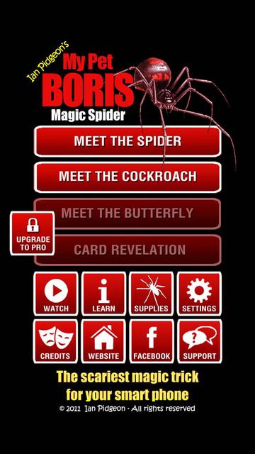 Magic Spider - My Pet Boris screenshot 11