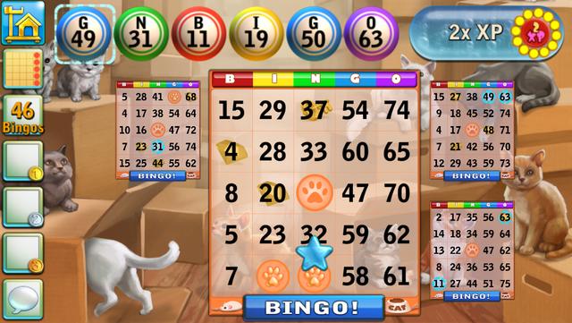 Bingo Cats screenshot 5